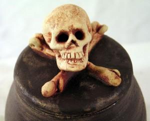 tn_1200_Skull_5_Front.jpg
